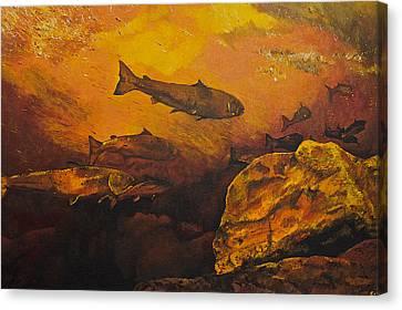 Salmon Run Canvas Print by Terry Gill