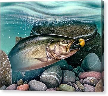 Salmon Stream Canvas Print