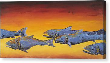 Salmon Sunrise Canvas Print by Carolyn Doe