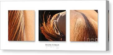 Salon D'equus Dark Canvas Print