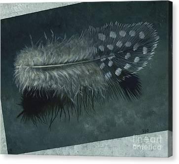 Sal's Feather Canvas Print