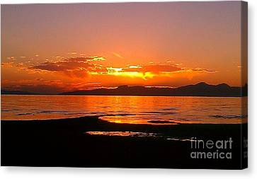 Canvas Print featuring the photograph Salt Lakes A Fire by Chris Tarpening