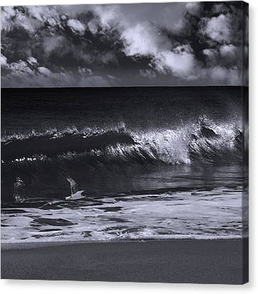 Salt Life Morning 1 Canvas Print by Laura Fasulo