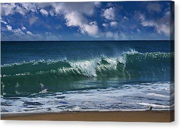 Seagull Flying Canvas Print - Salt Life Morning by Laura Fasulo