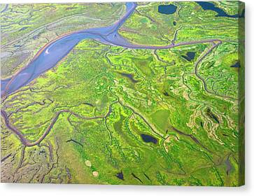 Salt Marshes From The Air. Canvas Print by Mark Williamson