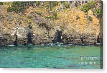 Salt Point Sea Caves Canvas Print by Suzanne Luft