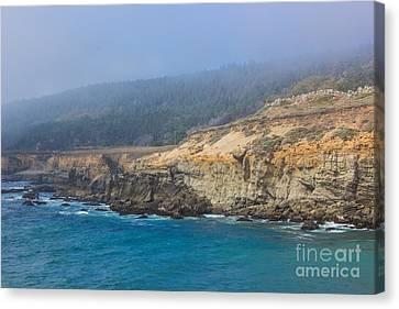 Salt Point State Park Coastline Canvas Print by Suzanne Luft