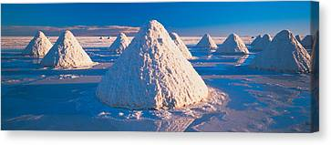 Salt Pyramids On Salt Flat, Salar De Canvas Print