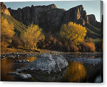 Salt River Fall Foliage Canvas Print by Dave Dilli