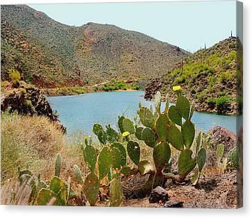 Carefree Arizona Canvas Print - Salt River by Gordon Beck