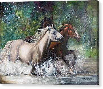 Salt River Horseplay Canvas Print