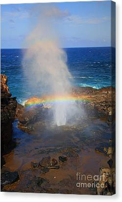 Blowhole Canvas Print - Salt Spray Rainbow by Mike  Dawson