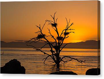 Salton Sea Sunset Canvas Print
