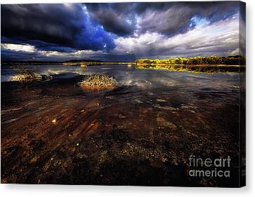 Saltwater Marsh  Canvas Print by George Oze