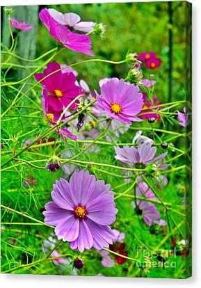 Saluda Wildflowers II Canvas Print