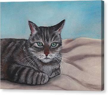 Sam Canvas Print by Anastasiya Malakhova