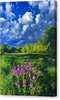 Same Old Light Is Shining Canvas Print by Phil Koch