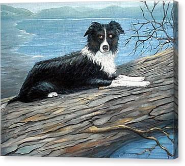 Sammy Mcdonald Canvas Print