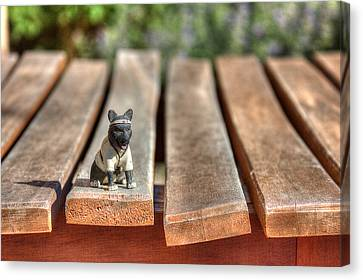 Canvas Print featuring the photograph Samurai Pooch by Dave Garner