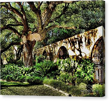 San Antonio D Canvas Print