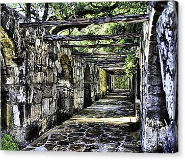 San Antonio F Canvas Print