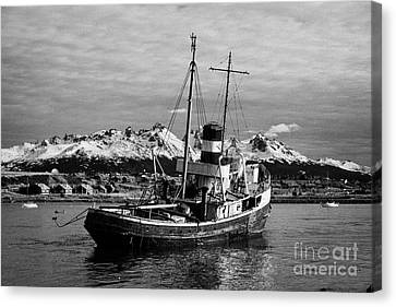 san cristobal saint christopher tugboat wreck in Ushuaia Argentina Canvas Print by Joe Fox