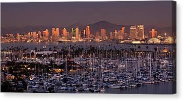 San Diego Skyline Canvas Print by Alexis Birkill