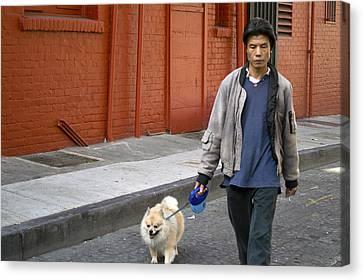 San Francisco Chinatown Dog Walker Canvas Print by Christopher Winkler