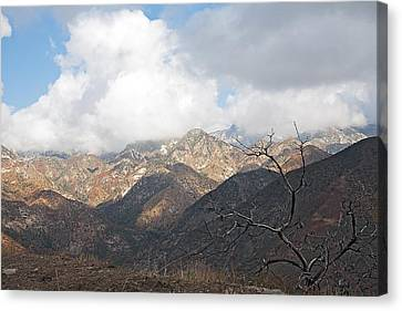 The San Gabriels Canvas Print