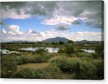 San Tan Wide Canvas Print by George Lenz