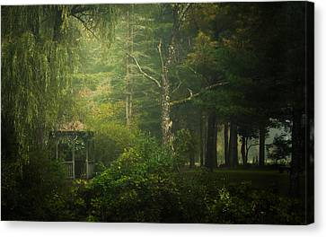 Sanctuary Canvas Print by Chris Fletcher