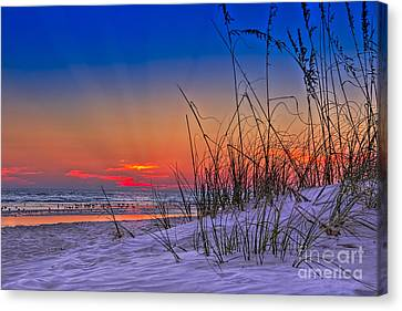 Sand And Sea Canvas Print by Marvin Spates