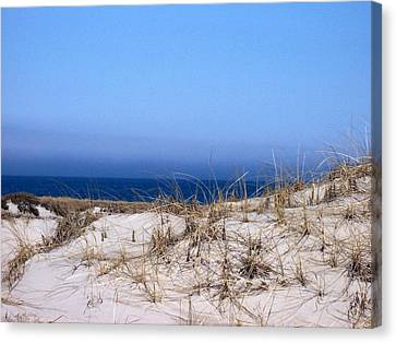 Sand And Sky Canvas Print by Catherine Gagne