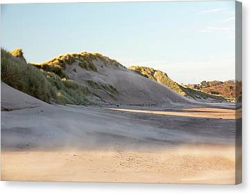 Sand Blowing In A Sand Storm Canvas Print by Ashley Cooper