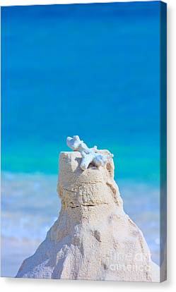 Sand Castle With Coral Against Calm Turquoise Sea Canvas Print by Beverly Claire Kaiya