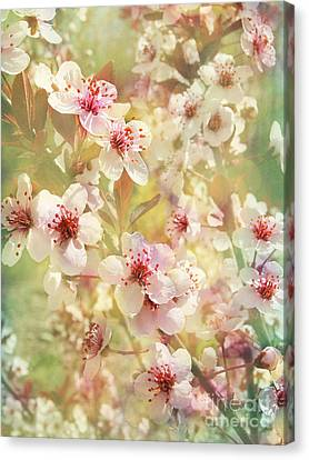 Sand Cherry Flourish Canvas Print