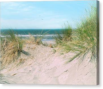 Canvas Print featuring the photograph Sand Drifts by Micki Findlay