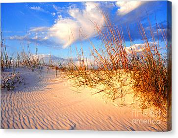 Sand Dune And Sea Oats At Sunset Canvas Print by Thomas R Fletcher