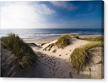 Sand Dune Canvas Print by Boon Mee