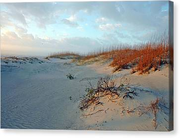 Sand Dune On Tybee Island Canvas Print
