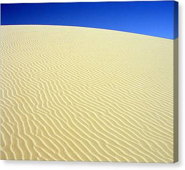 Canvas Print featuring the photograph Sand Dune by Ramona Johnston
