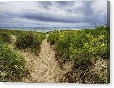 Sand Dunes Beach Path Canvas Print