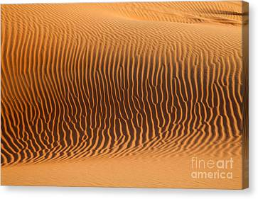 Canvas Print - Sand Dunes In Dubai by Fototrav Print