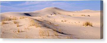 Sand Dunes On An Arid Landscape Canvas Print by Panoramic Images