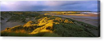 Sand Dunes On The Beach, Newburgh Canvas Print by Panoramic Images