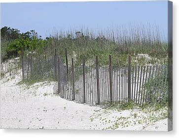 Sand Fence At Cape Lookout Canvas Print by Cathy Lindsey