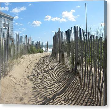 Sand Fence At Southern Shores  Canvas Print