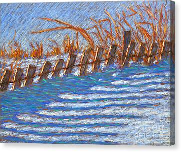 Sand Fence Winter Canvas Print by Bryan Allen