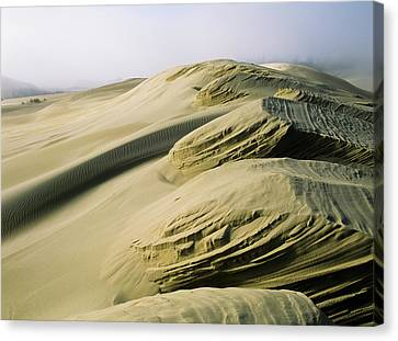 Sand Patterns Created By The Wind Canvas Print by Robert L. Potts