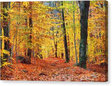 Sand Run Metro Park Canvas Print by Anthony Caruso